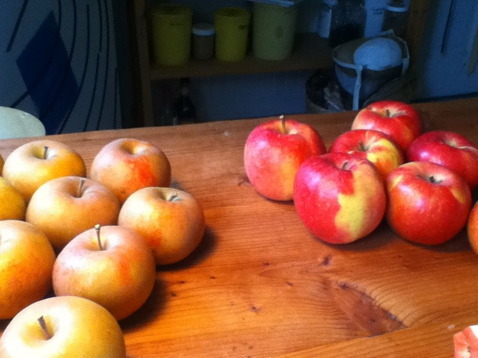 apples on table at felicia house